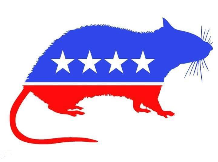 The Real democ-RAT Party Image
